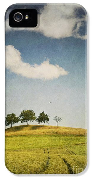 Meadow iPhone 5 Cases - We Are 4 iPhone 5 Case by Priska Wettstein
