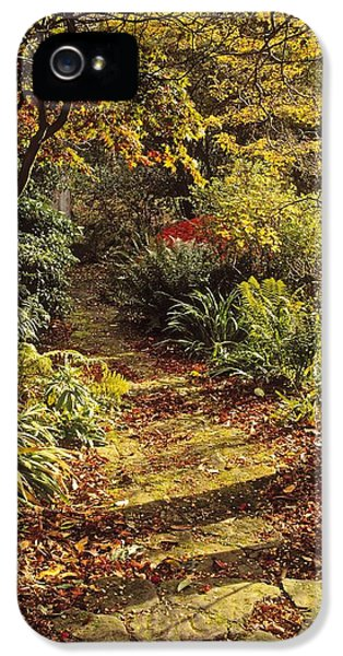 Down In The Garden iPhone 5 Cases - Woodland Path, Mount Stewart, Ards iPhone 5 Case by The Irish Image Collection