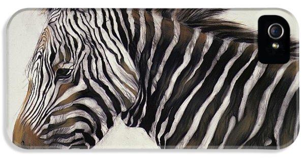 Zebra  IPhone 5 / 5s Case by Odile Kidd