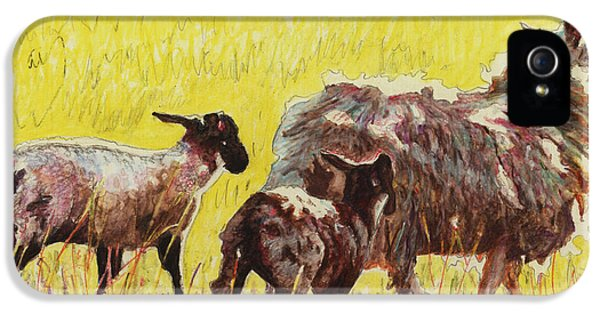 Ewe iPhone 5 Cases -  Following iPhone 5 Case by Helen White