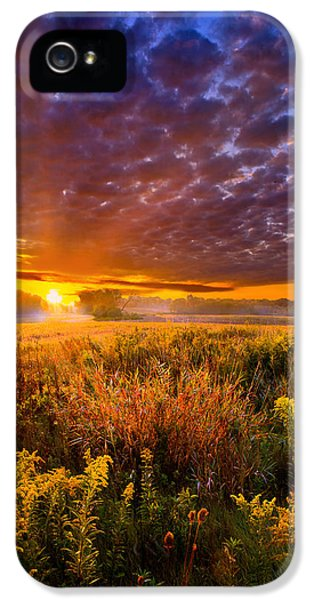 Blue Leaf iPhone 5 Cases - A Drifting Kiss iPhone 5 Case by Phil Koch
