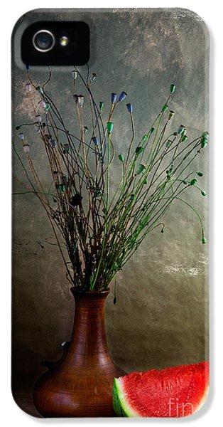 Autumn Still Life IPhone 5 / 5s Case by Nailia Schwarz