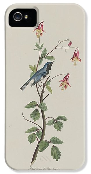 Black-throated Blue Warbler IPhone 5 / 5s Case by John James Audubon