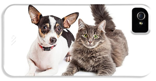 High Key iPhone 5 Cases - Dog and Cat Laying Together Looking Forward iPhone 5 Case by Susan  Schmitz