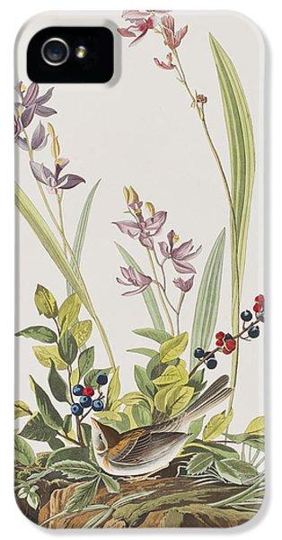 Field Sparrow IPhone 5 / 5s Case by John James Audubon
