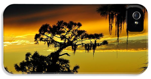 Central Florida Sunset IPhone 5 / 5s Case by David Lee Thompson