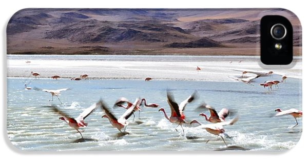 Flying Flamingos IPhone 5 / 5s Case by Sandy Taylor