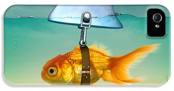 Curtain iPhone 5 Cases - Gold Fish  iPhone 5 Case by Mark Ashkenazi