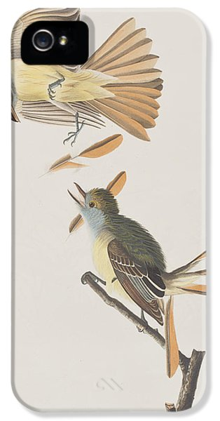 Great Crested Flycatcher IPhone 5 / 5s Case by John James Audubon