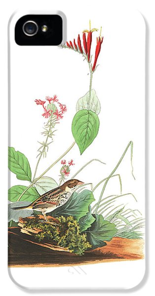 Henslow's Bunting  IPhone 5 / 5s Case by John James Audubon