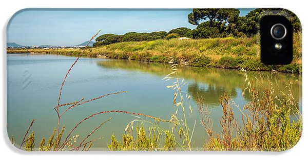 Poles iPhone 5 Cases - Lake Landscape iPhone 5 Case by Carlos Caetano
