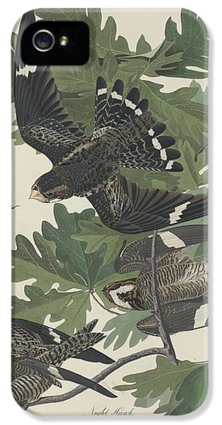 Night Hawk IPhone 5 / 5s Case by John James Audubon