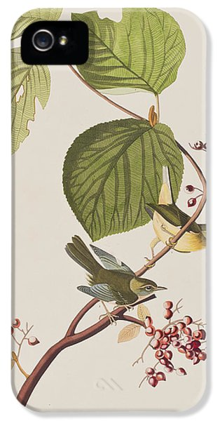 Pine Swamp Warbler IPhone 5 / 5s Case by John James Audubon