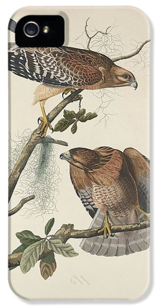 Red Shouldered Hawk IPhone 5 / 5s Case by John James Audubon