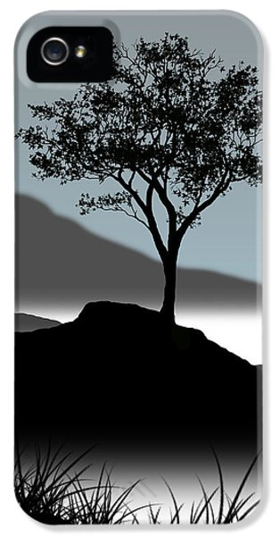 Trees iPhone 5 Cases - Serene iPhone 5 Case by Chris Brannen