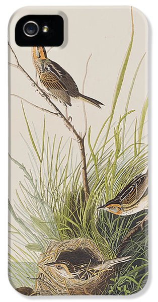 Sharp Tailed Finch IPhone 5 / 5s Case by John James Audubon