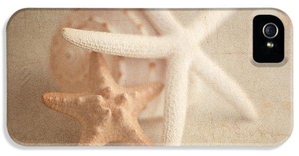 Crustacean iPhone 5 Cases - Starfish Still Life iPhone 5 Case by Tom Mc Nemar