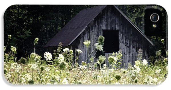 Meadow iPhone 5 Cases - Summer Barn iPhone 5 Case by Rob Travis