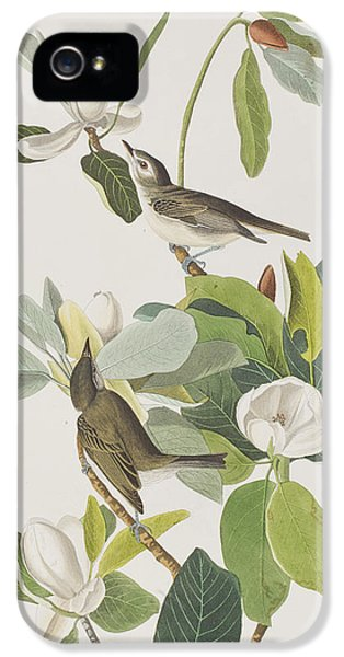 Warbling Flycatcher IPhone 5 / 5s Case by John James Audubon