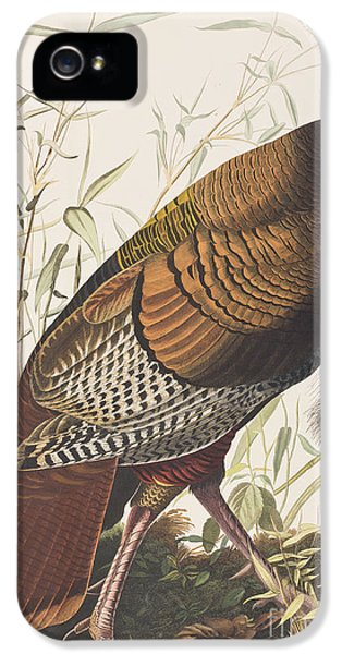 Wild Turkey IPhone 5 / 5s Case by John James Audubon
