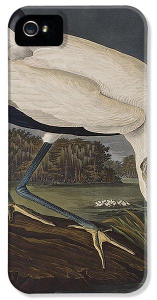 Wood Ibis IPhone 5 / 5s Case by John James Audubon
