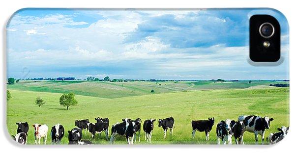 Happy Cows IPhone 5 / 5s Case by Todd Klassy