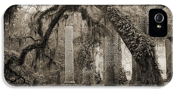 Ruins iPhone 5 Cases - Old Sheldon Church Ruins iPhone 5 Case by Dustin K Ryan