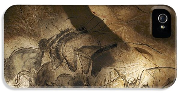 Archeology iPhone 5 Cases - Stone-age Cave Paintings, Chauvet, France iPhone 5 Case by Javier Truebamsf