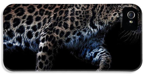 Amur Leopard IPhone 5 / 5s Case by Martin Newman