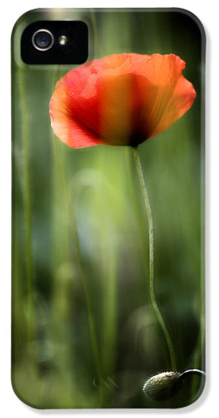 Poppy IPhone 5 / 5s Case by Silke Magino