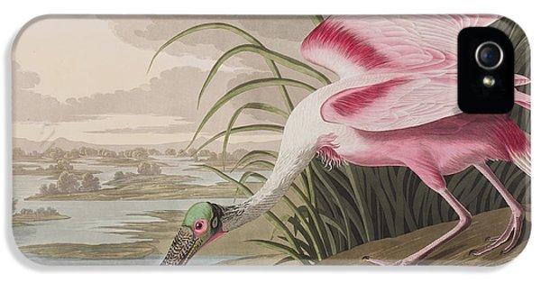 Roseate Spoonbill IPhone 5 / 5s Case by John James Audubon