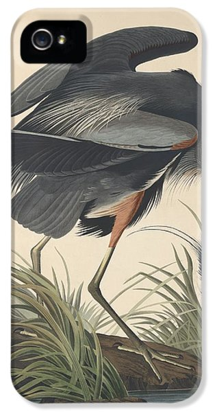 Great Blue Heron IPhone 5 / 5s Case by John James Audubon