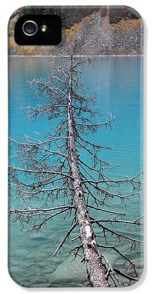 Health Fitness iPhone 5 Cases - Lake Louise Banff National Park iPhone 5 Case by Pierre Leclerc Photography