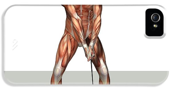 Male Muscles, Artwork IPhone 5 / 5s Case by Friedrich Saurer