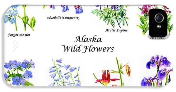 Alaska Wild Flowers Poster Horizontal IPhone 5 / 5s Case by Sharon Freeman