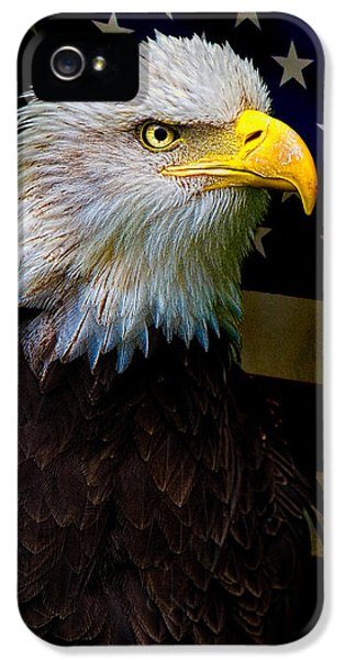 American Bald Eagle iPhone 5 Cases - An American Icon iPhone 5 Case by Chris Lord