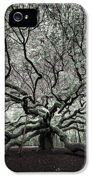 Angel Oak In Infrared IPhone 5 / 5s Case by Rick Berk