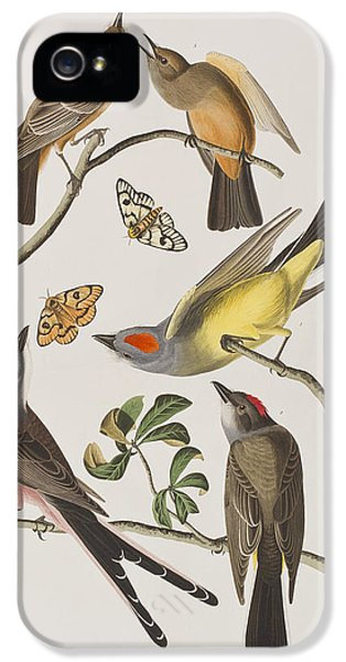 Arkansaw Flycatcher Swallow-tailed Flycatcher Says Flycatcher IPhone 5 / 5s Case by John James Audubon