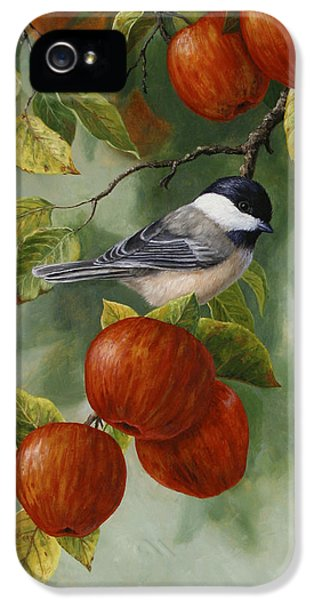 Apple iPhone 5 Cases - Apple Chickadee Greeting Card 2 iPhone 5 Case by Crista Forest