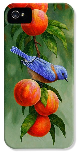 Blue Bird iPhone 5 Cases - Bird Painting - Bluebirds and Peaches iPhone 5 Case by Crista Forest