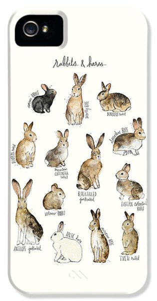 Rabbits And Hares IPhone 5 / 5s Case by Amy Hamilton