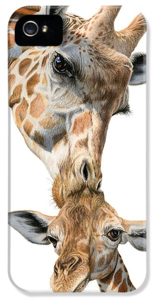 Mother And Baby Giraffe IPhone 5 / 5s Case by Sarah Batalka