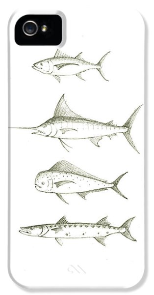 Saltwater Gamefishes IPhone 5 / 5s Case by Juan Bosco