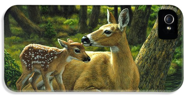 Whitetail Deer - First Spring IPhone 5 / 5s Case by Crista Forest