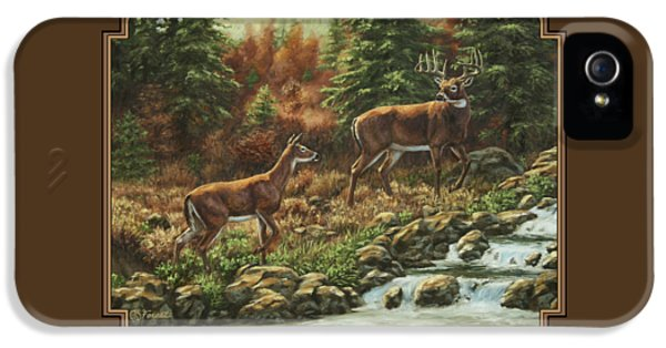 Hunting iPhone 5 Cases - Whitetail Deer - Follow Me iPhone 5 Case by Crista Forest