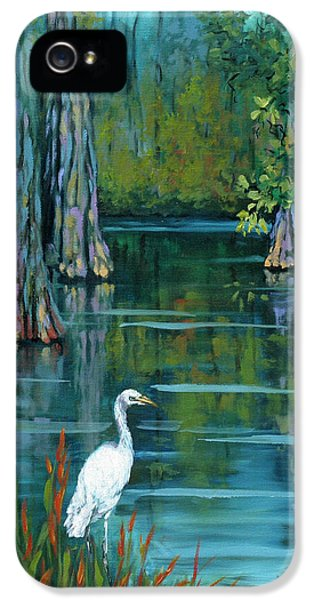 The Fisherman IPhone 5 / 5s Case by Dianne Parks