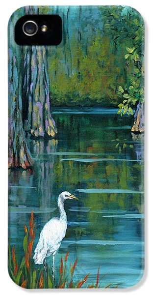 Bayou iPhone 5 Cases - The Fisherman iPhone 5 Case by Dianne Parks
