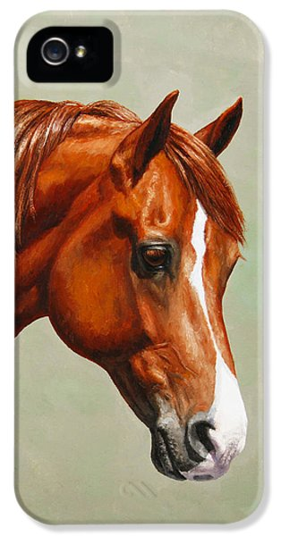 Livestock iPhone 5 Cases - Morgan Horse - Flame iPhone 5 Case by Crista Forest