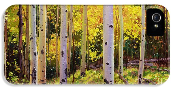 Gay iPhone 5 Cases - Aspen Symphony iPhone 5 Case by Gary Kim