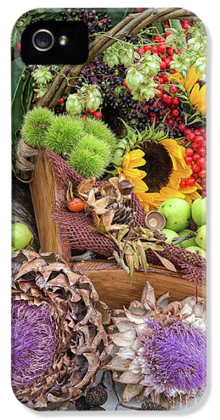 Autumn Abundance IPhone 5 / 5s Case by Tim Gainey